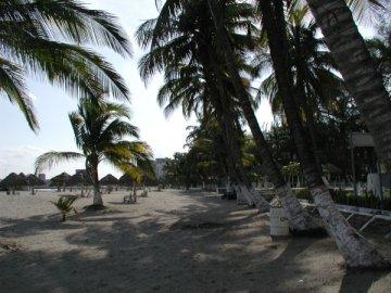Playas Hoteles En Veracruz